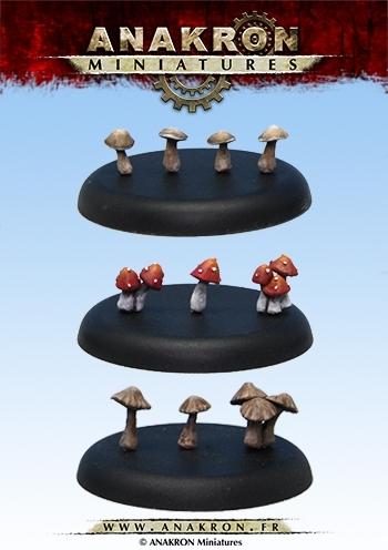 Mushrooms kit
